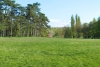 deg_kastelypark_arboretum011