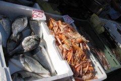 trogir_market07.jpg