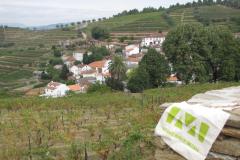 09-23-p-douro-volgy-1