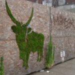 Zöld graffiti