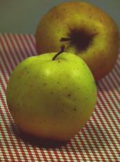 almapalacsinta