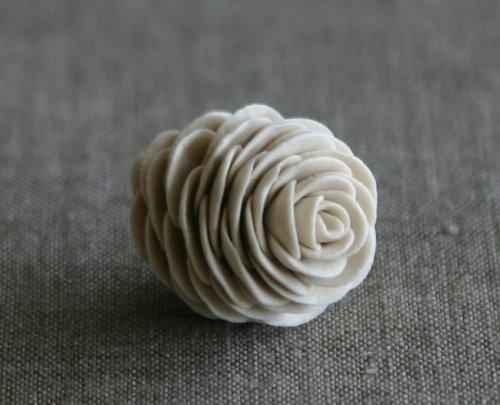 pinecones5