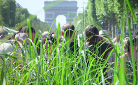Ananász, tök és bab a francia városi divat