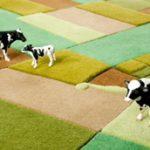 Színes szőnyegkét terül el alattad a táj
