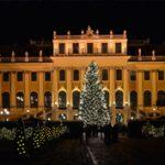 Adventi vásár Bécsben és ami azon túl van