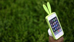 Nyuszis, keresztszemes, fa: 3 rendhagyó tok iPhone 4-hez