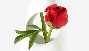 3 elképesztő váza – a funkción túli gyönyör