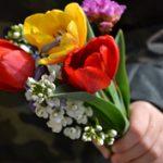 Anya lettem - Virágok csak úgy és anyák napjára