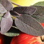 Hétköznapi gourmandok: pirítós zsályával és almával