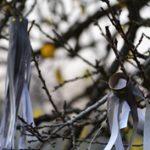 Nyolclábú, fekete rémségek a kopaszodó fákon