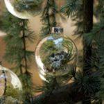 Különleges karácsonyfadíszek élő növényekből