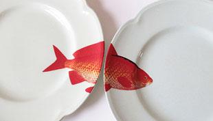 Régi tányérok új élete: színes halakkal álmodom