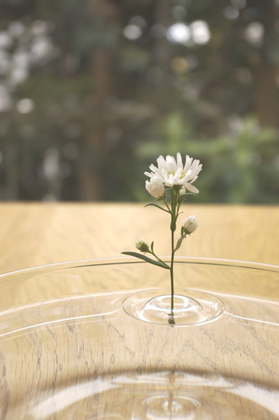 oodesign-Floating-Vases-5