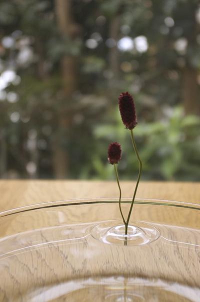 oodesign-Floating-Vases-7