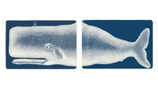 A nagy bálna-show: a vajtartótól a falmatricáig