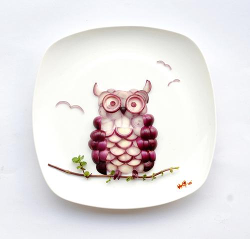 ohiseered_owl-nion