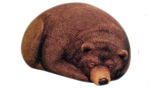 Alvó grizzlyre óvatosan, de határozottan ugorj!