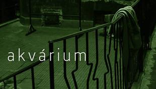 Tóth Krisztina: Akvárium (részlet)