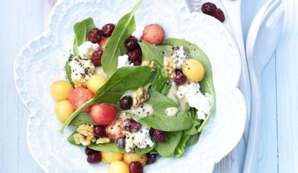 Ínyenc saláta szárított amerikai tőzegáfonyával