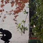 Le kellene festeni a falat! - A pusztulás virágai