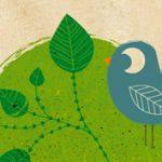 Nagy Réka: Ökoanyu - egyszerűen zöld (könyv)