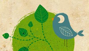Nagy Réka: Ökoanyu – egyszerűen zöld (könyv)