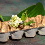 Húsvét: készíts dizájnos tojástartót szemétből