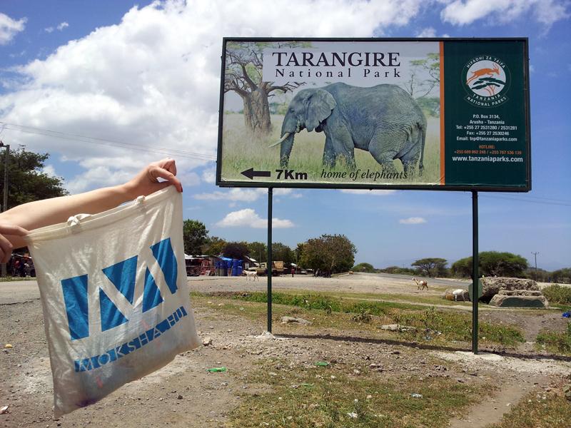 Tarangire National Park, Tanzania (Fotó: Edit, 2014)