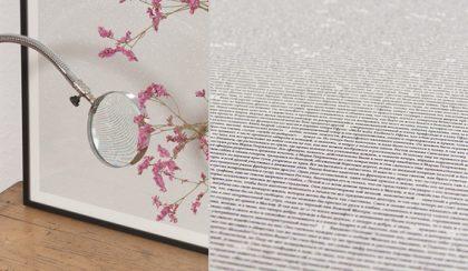 Az első szótól az utolsóig: könyvek a falon