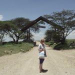 A moksha-táska legújabb kalandjai: hajtű és ilyenek