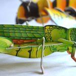 Szöcske és méhecske fiatal bogarászoknak