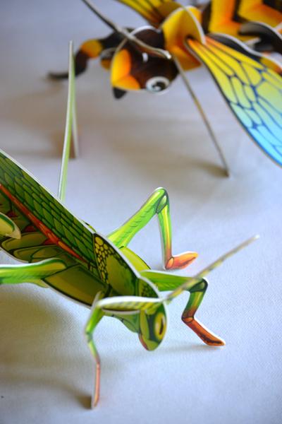 Szöcske és méhecske, és még lehet kapni katicát és pillangót (Fotó: Myreille)