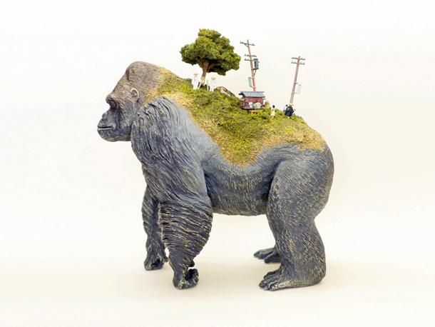 maicoakiba01