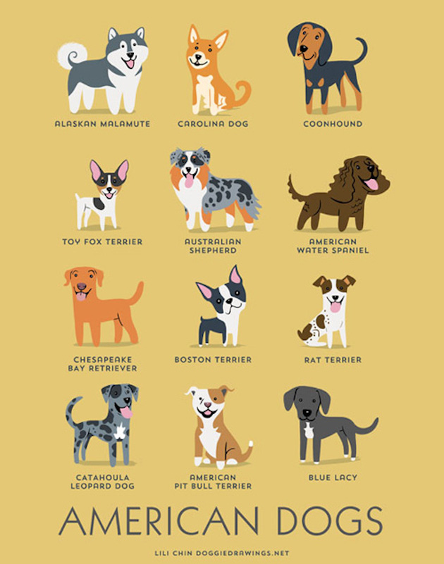 Illustrated-Guide-to-Dogs-of-the-World01