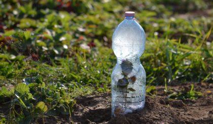 A kertben elszaporodtak a PET-palackok