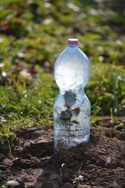 A kerti PET-palack is lehet szép, csak szép fények kellenek hozzá, de mondhatnám azt is, hogy PET-palackba zárt remény... (Fotó: Myreille)