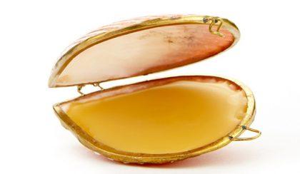 Kagylóba zárt parfümök modern Vénuszoknak