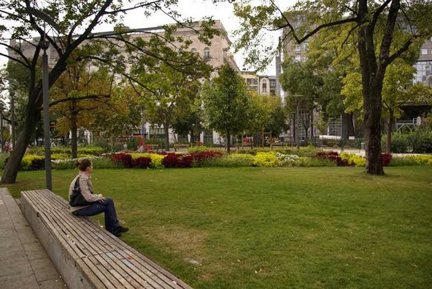 Amerikai típusú pad az Erzsébet téren (Fotó: Főkert)