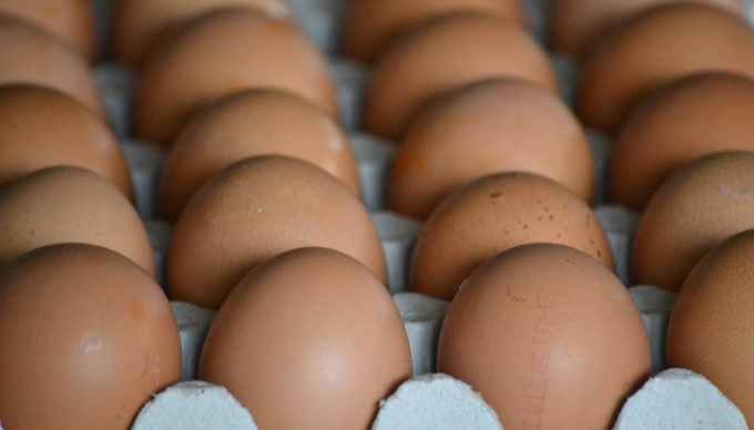 Bolti tojások/Fotó: Myreille