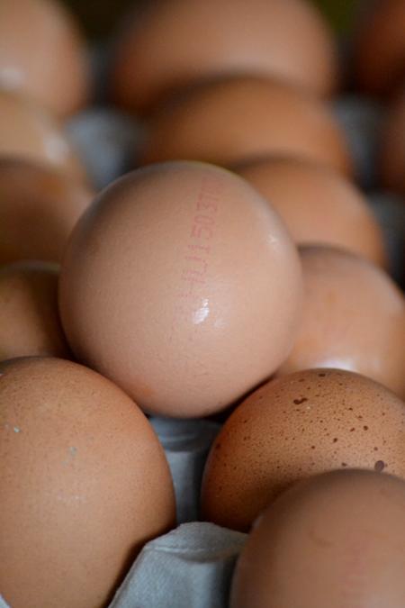 3HU - Ketreces tartásból származó magyar tojás/Fotó: Myreille