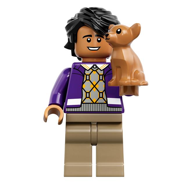 Raj Koothappali - 21302 LEGO Big Bang Theory
