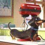 A kis kedvencek titkos élete - Zárd el a konyhai robotgépet!