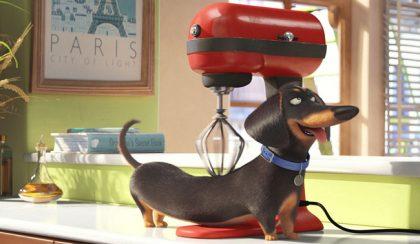A kis kedvencek titkos élete – Zárd el a konyhai robotgépet!