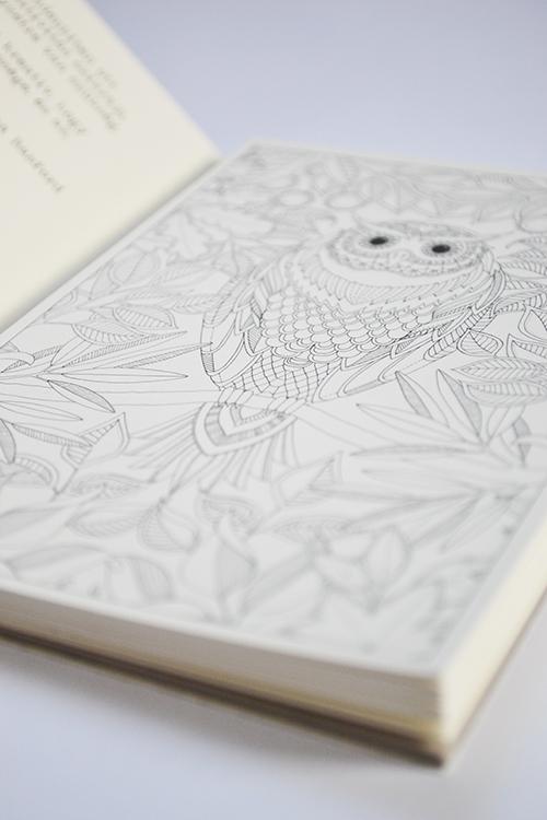 Igazi képeslapot küldeni és kapni megunhatatlanul szórakoztató. - Johanna Basford: Titkos kert - Képeslapkönyv 20 kivehető képeslappal (Fotó: Myreille)