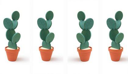 Poháralátét: kaktusszal a káosz ellen