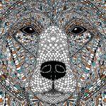 Vadaskert: színezhető állatportrék