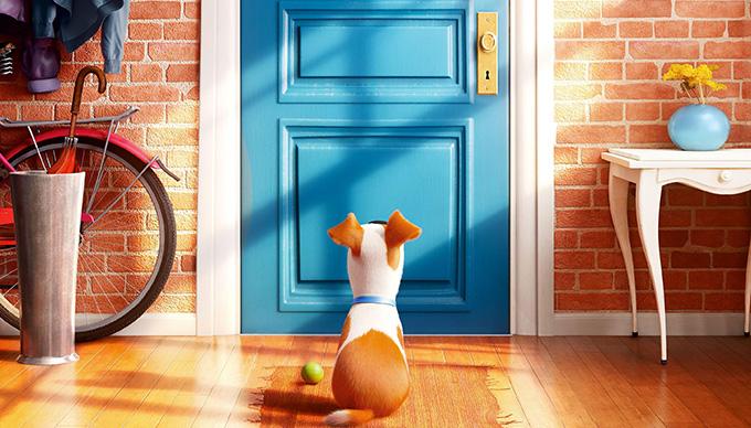 A kis kedvencek titkos élete/The Secret Life of Pets