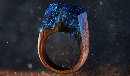Gyűrűk fából, gyantából és erdei varázslatból
