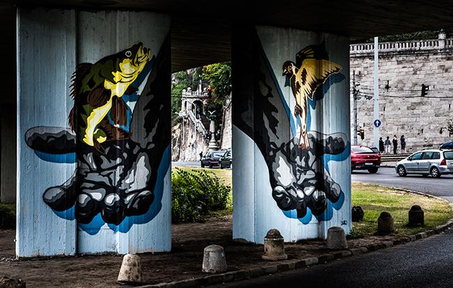 Pusztai Balázs - Erzsébet híd