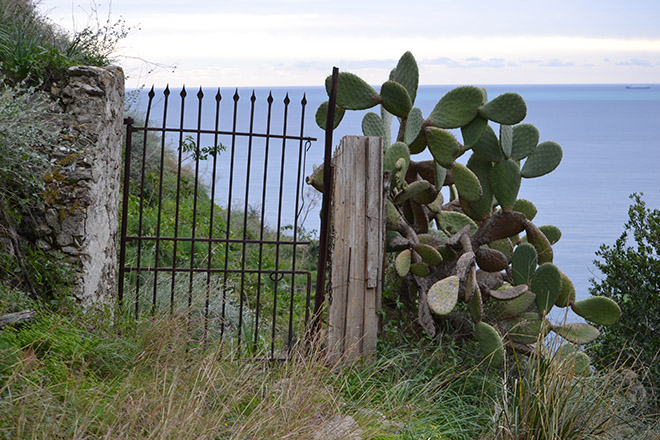 Már a kapu másik oldalán - Taormina (Fotó: Myreille)
